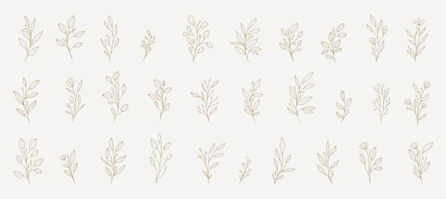 Decorações florais para todas as necessidades Vetor Premium
