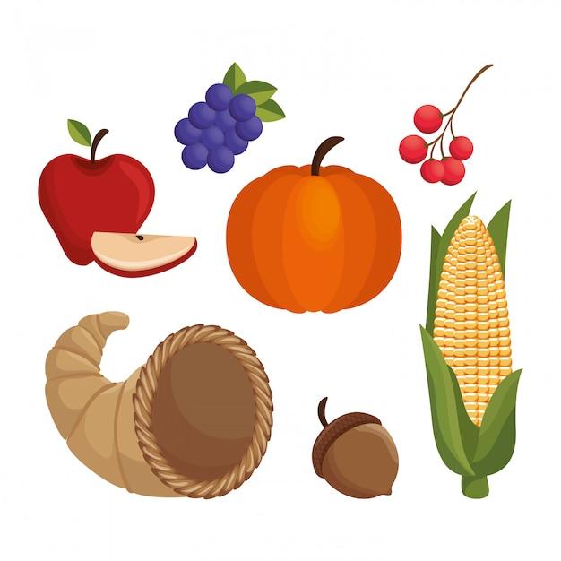 Definir comida design de ícones de ação de graças Vetor grátis