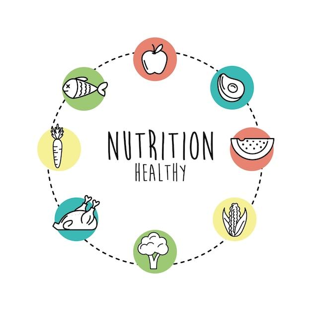 ff51c7ea2 Definir nutrição legumes e frutas com proteínas e farinhas Vetor Premium