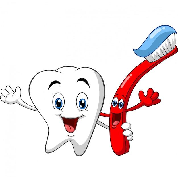 Dente dental dos desenhos animados, segurando a escova de dentes Vetor Premium