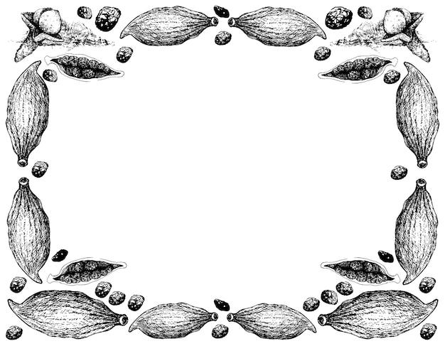 Desenhado à mão de cravo com moldura de vagens de cardamomo Vetor Premium