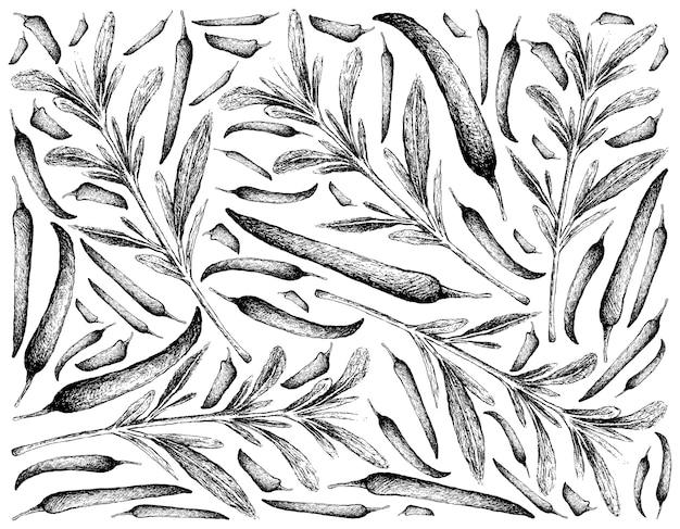 Desenhado à mão de salgados de verão com pimenta Vetor Premium