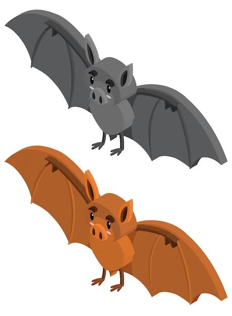 desenho 3d para dois morcegos baixar vetores premium