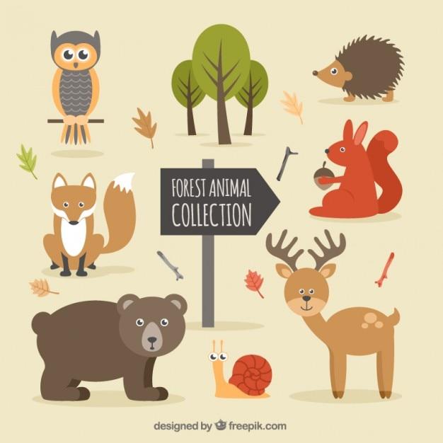 Desenho animais da floresta agradáveis e natureza Vetor grátis