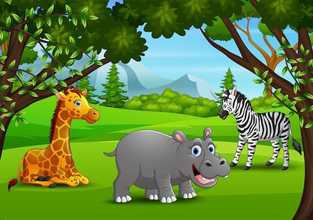 Desenho de animais selvagens desfrutando na selva Vetor Premium