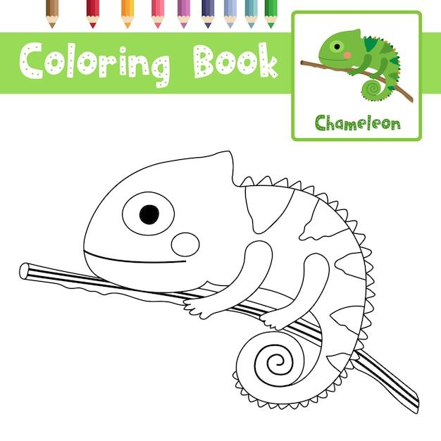 desenho de camaleão no galho para colorir baixar vetores premium