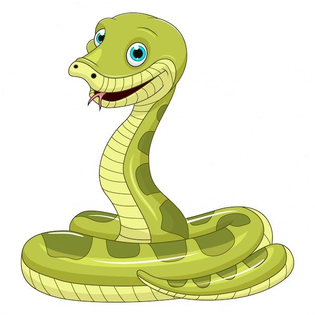 Desenho de cobra verde bonito no fundo branco Vetor Premium