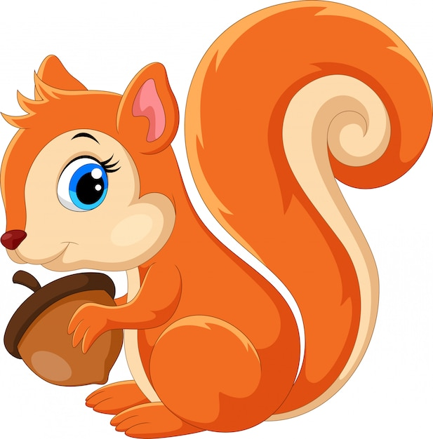 Desenho de esquilo fofo Vetor Premium