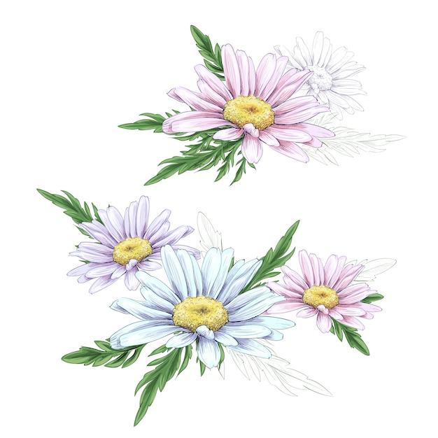 Desenho de flor da margarida. Vetor Premium