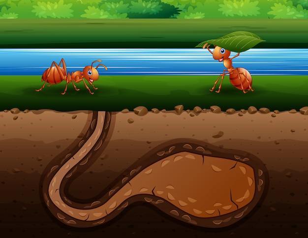 Desenho de formigas rastejando de volta para o buraco Vetor Premium