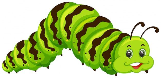 Desenho de lagarta verde bonito Vetor Premium