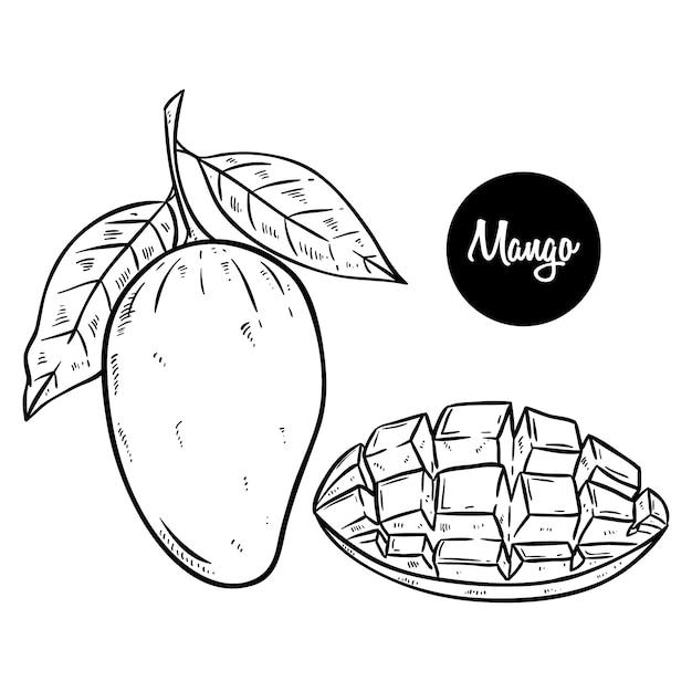 Desenho De Mao De Manga Fresca Preto E Branco Vetor Premium