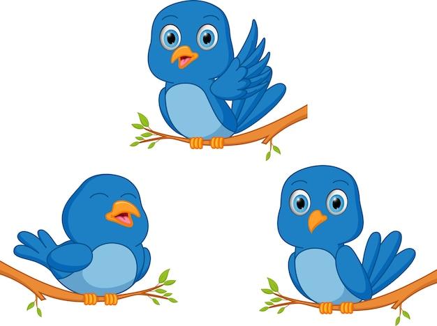 desenho de pássaro azul baixar vetores premium
