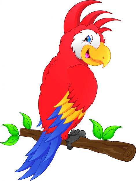 Desenho de pássaro de arara Vetor Premium