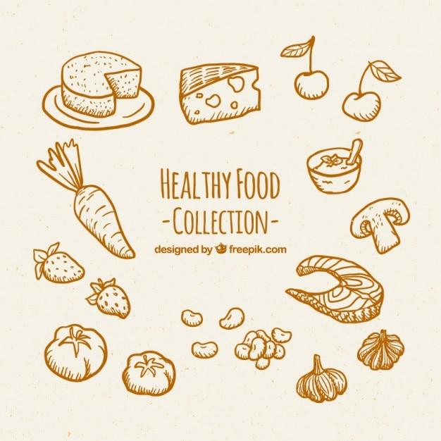 Desenho De Recolha De Alimentos Saudaveis Vetor Premium