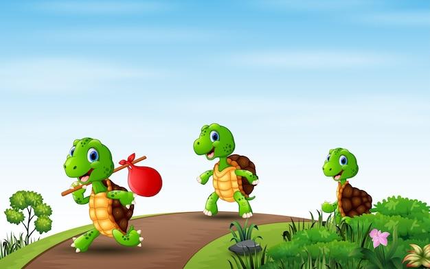 Desenho de três tartarugas correndo na estrada Vetor Premium