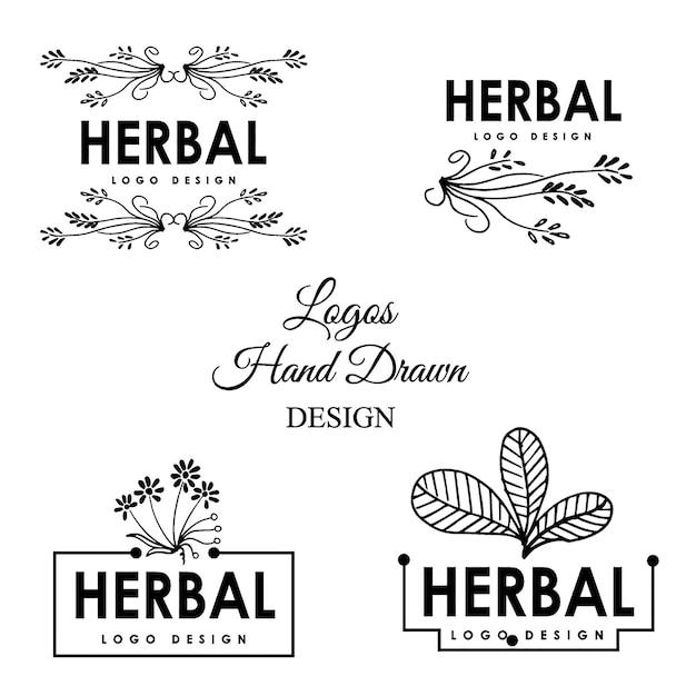 Desenho desenhado à mão do logotipo das ervas Vetor grátis
