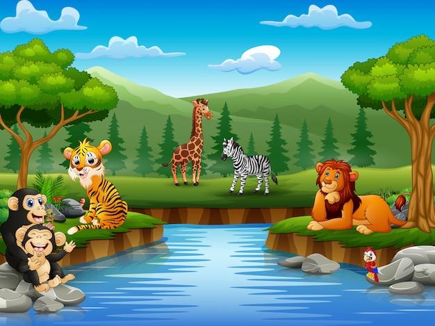 Desenhos animados de animais estão curtindo a natureza pelo rio Vetor Premium