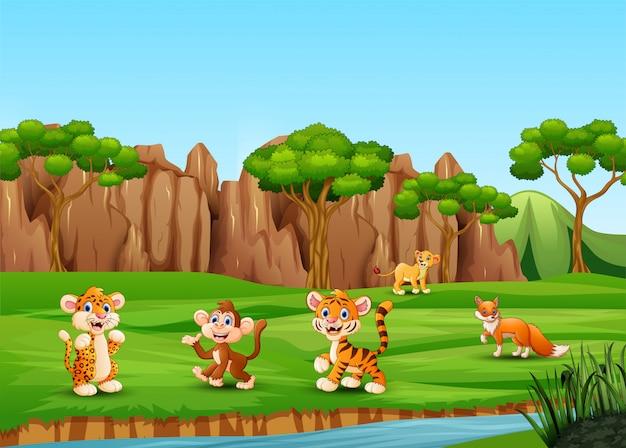 Desenhos animados de animais selvagens jogando e curtindo no campo Vetor Premium