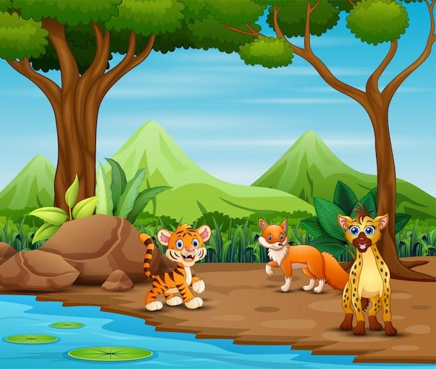 Desenhos animados de animais selvagens que vivem na floresta Vetor Premium