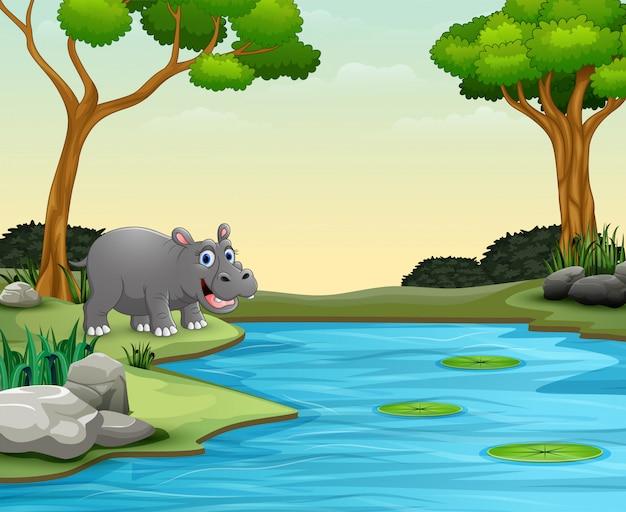 Desenhos animados de hipopótamo animal quer nadar em um lago Vetor Premium