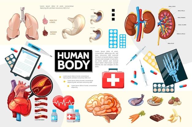Desenhos animados infográficos da anatomia do corpo humano com comprimidos para alimentos de órgãos internos e ilustração de equipamentos médicos Vetor Premium