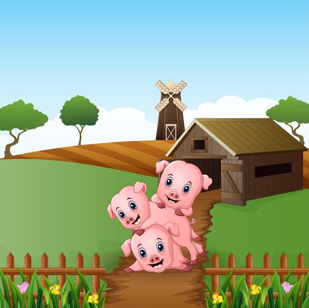 Desenhos Animados Três Porquinhos Brincando No Fundo Da