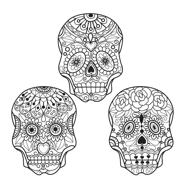 Desenhos De Caveira Mexicana Para Adultos Vetor Premium