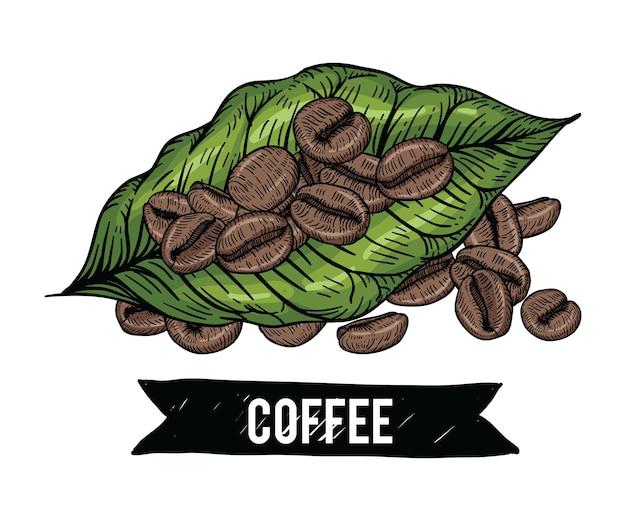 Desenhos De Graos De Cafe Vetor Premium