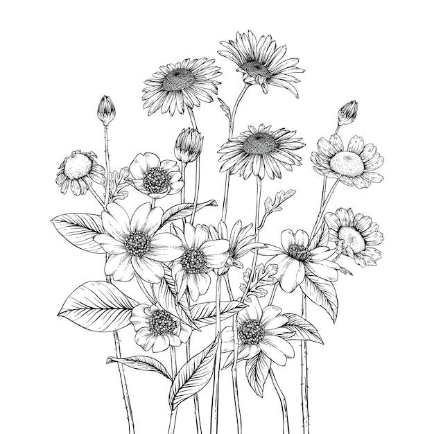 Desenhos lindos de folhas e flores Vetor Premium