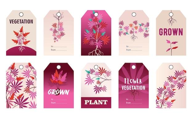 Desenhos promocionais de tag rosa com planta de cânhamo. ilustração de desenho animado Vetor grátis