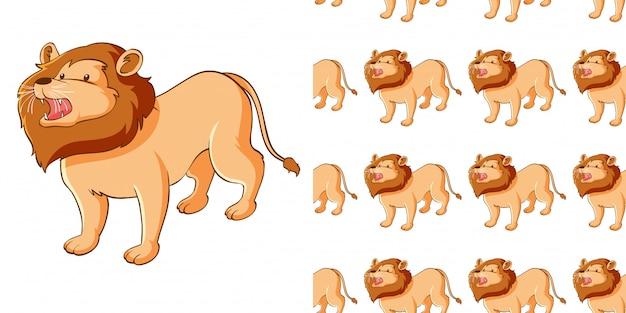 Design com leão bonito padrão sem emenda Vetor grátis