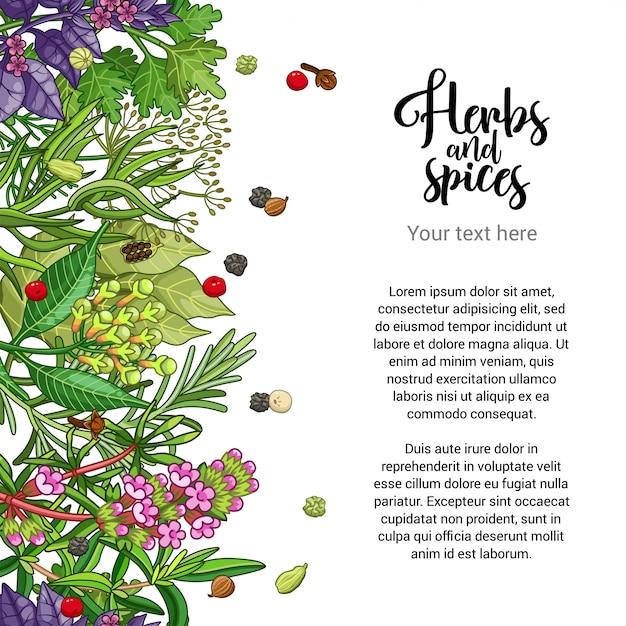 Design de cartão à base de plantas com especiarias e ervas Vetor Premium