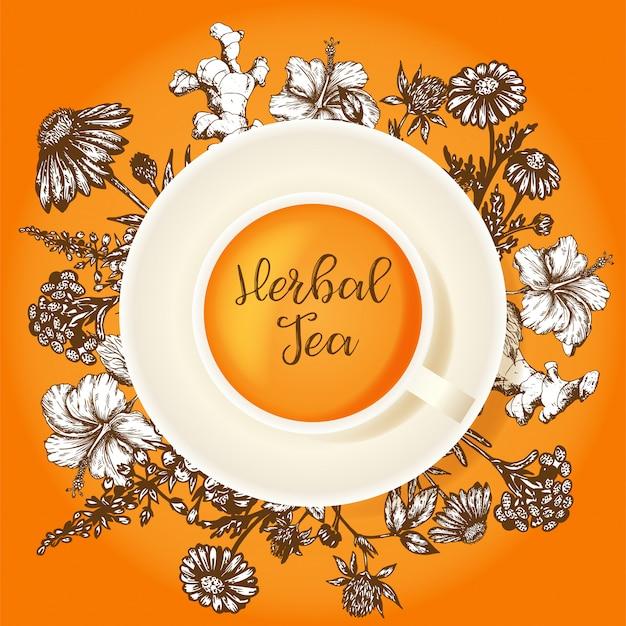 Design de embalagem de chá de ervas. ervas orgânicas e flores silvestres. mão esboçou ilustração de hibisco, trevo, calêndula e echinacea. Vetor Premium