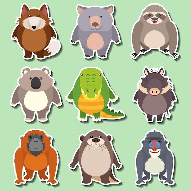 Design de etiqueta para animais selvagens no fundo verde Vetor grátis