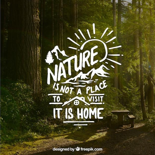 Design de letras e citações sobre o fundo da floresta Vetor grátis