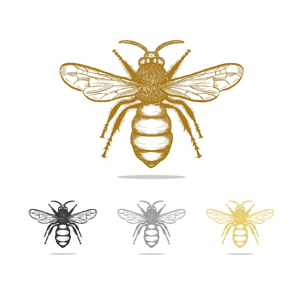 Design de logotipo de abelha vintage Vetor Premium
