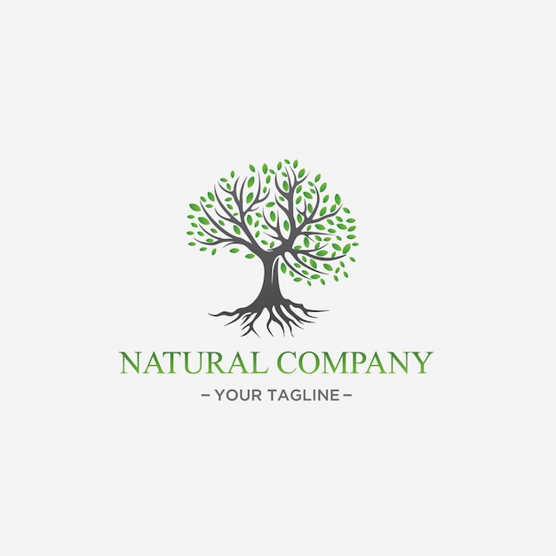 Design de logotipo de árvore verde folha natural premium vector Vetor Premium
