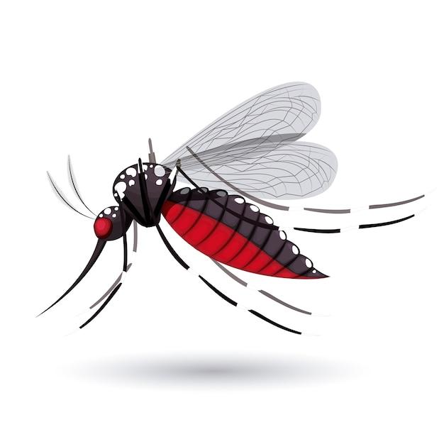 Design de mosquito infeccioso Vetor Premium