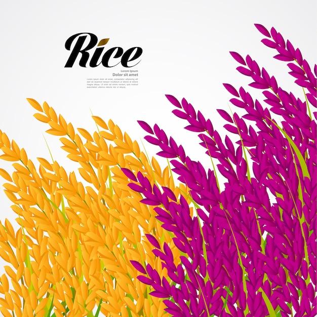 Design premium rice Vetor Premium