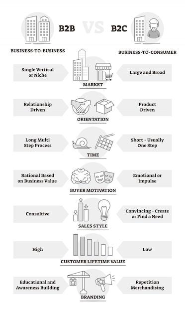 Diagrama de contorno de comparação de modelos de negócios b2b e b2c Vetor Premium