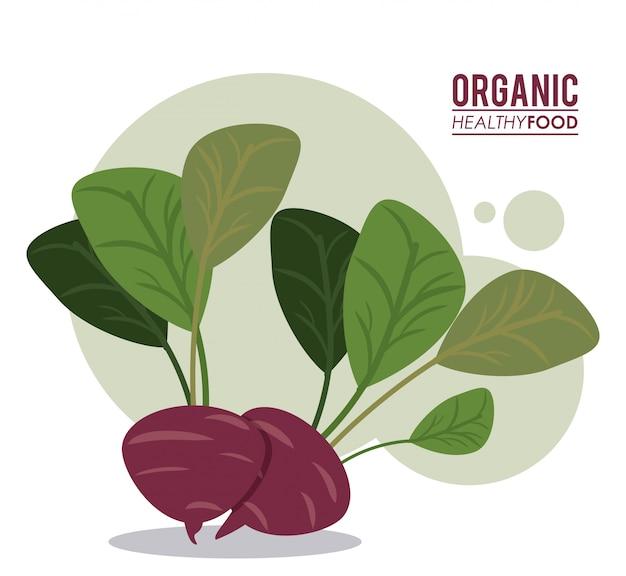 Dieta orgânica de beterraba alimentar saudável Vetor Premium