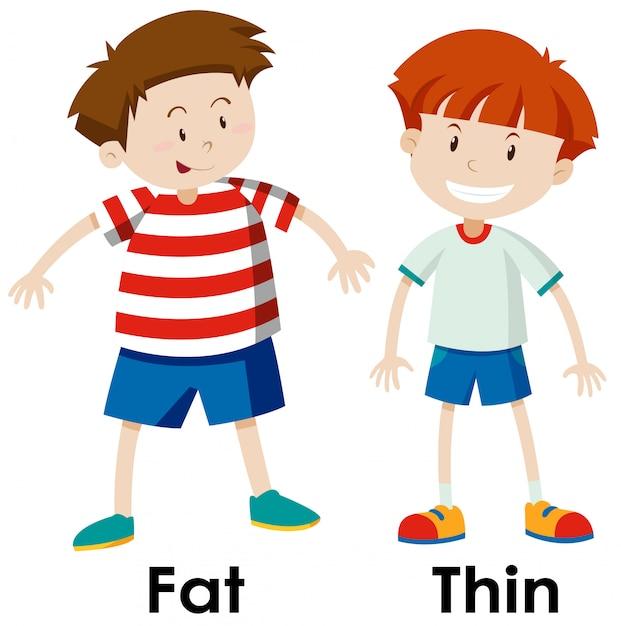 Diferenças entre gordura e coisa Vetor grátis