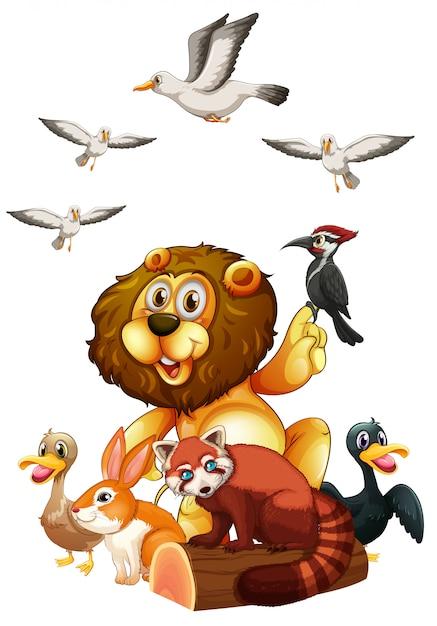 Diferentes tipos de animais selvagens no log Vetor grátis