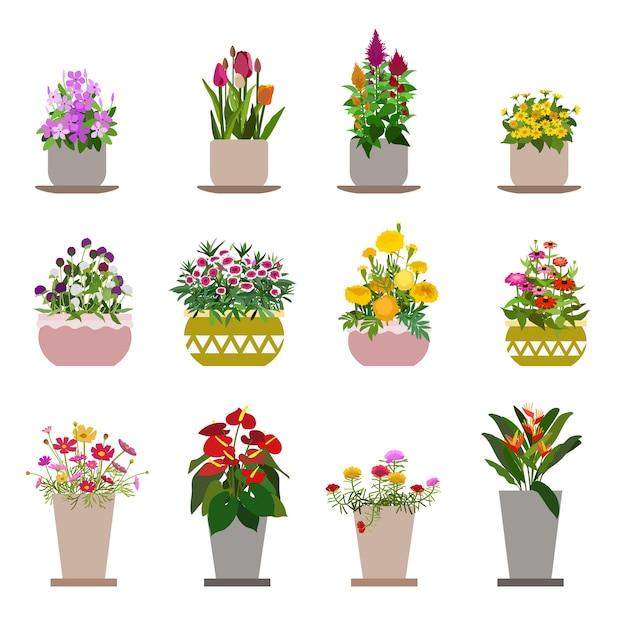 Diversas flores em vasos, isolados no fundo branco Vetor Premium