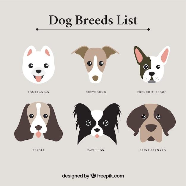 Dog raças lista Vetor grátis