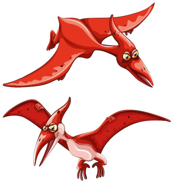 Dois dinossauros voadores vermelhos Vetor grátis