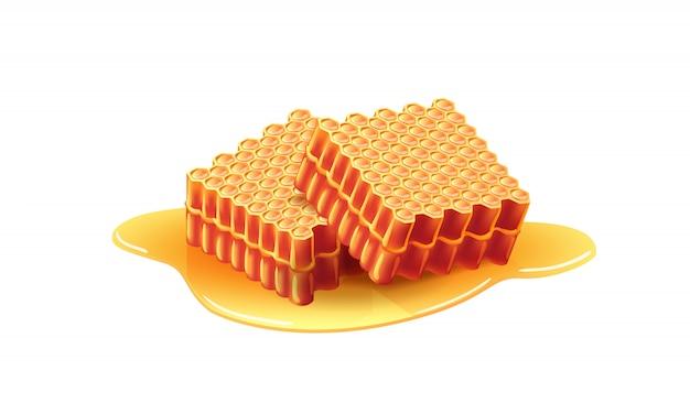 Dois favos de mel doces frescos. apiário, sobremesa, ingrediente. conceito de colméia. Vetor grátis
