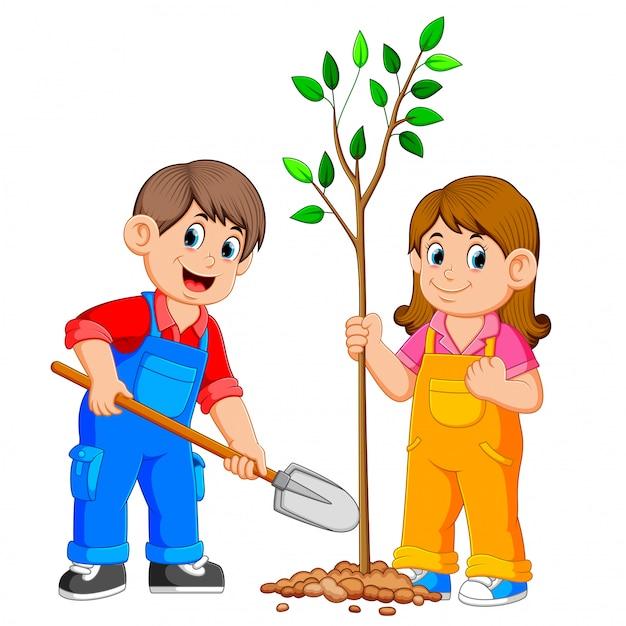 Dois filhos, plantar, um, árvore Vetor Premium