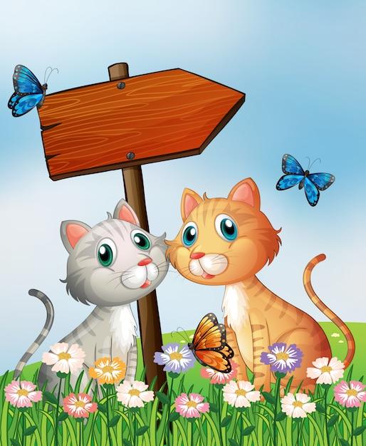 Dois gatos na frente de uma placa de flecha de madeira vazia Vetor grátis